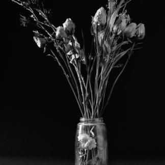 arrangement of dried flowers