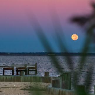 Michael Ortega Photographer moon over barnaget bay